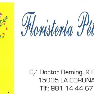 Floristeria petalos